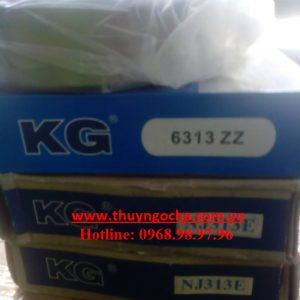 kg-6313