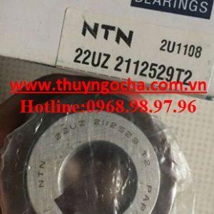 22UZ2112529T2-NTN-300×300